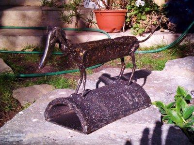 Uno mas a la familia de Don Quijote!!! el perro
