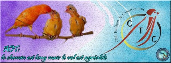 club tunisien de canariculture