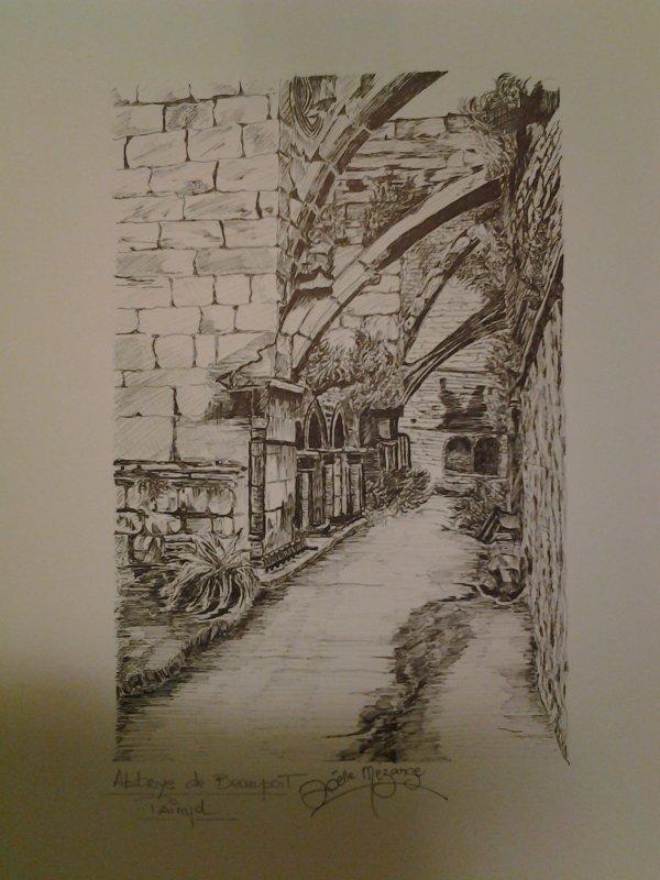 Abbaye de  Beauport terminee ce soir 18 janvier ....pas de temps a perdre !!!...