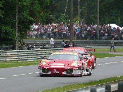 2010 Forza Alesi !!!