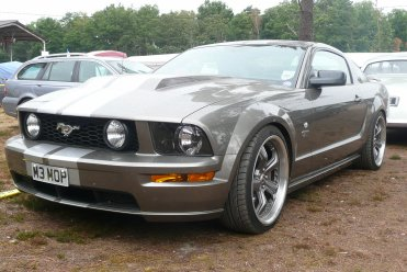 "UNE MUSTANG ""VITAMINEE""A ARNAGE/2011"