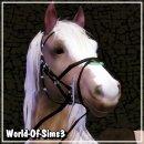 Photo de World-Of-Sims3