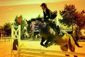 Le cheval est pour l'homme ce que sont les ailes aux oiseaux. ♥