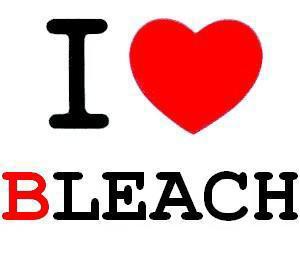 Bleach - Présentation Du Manga