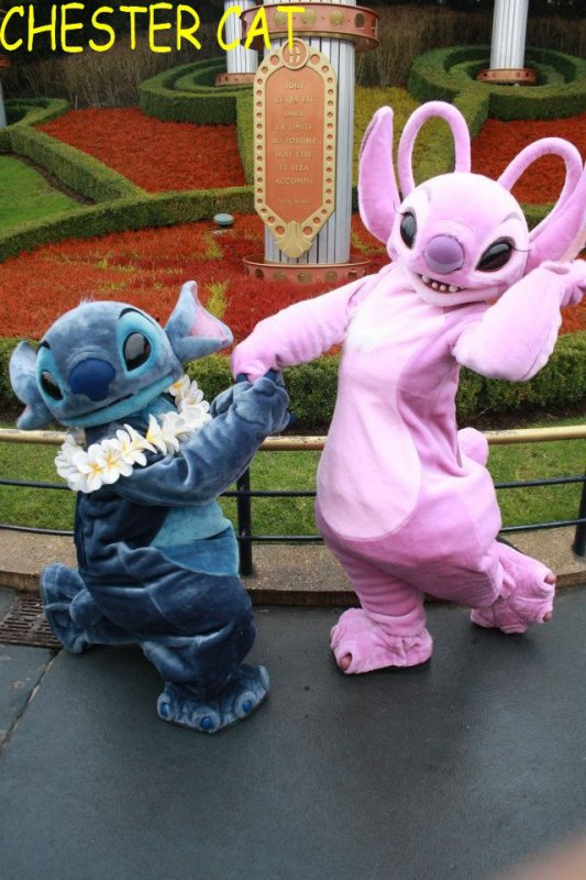 Stitch et Angel