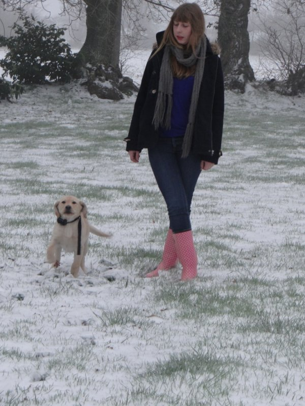Vive le vent, vive le vent... boule de neige !