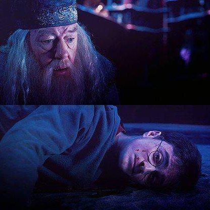 """""""Tu est un idiot Harry Potter! Et tu vas perdre, tout perdre."""" ~Voldemort."""