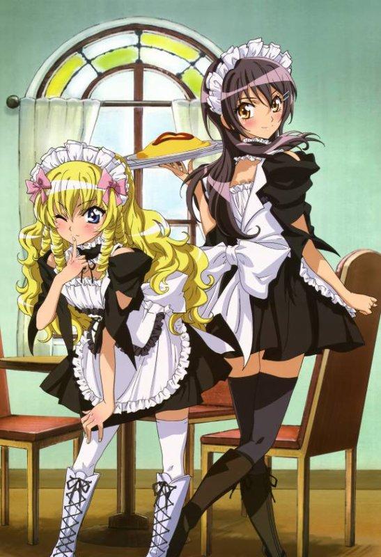 """"""" Manga """" Animée ---) """" Kaichou wa maide sama """""""