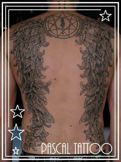 dos ailes