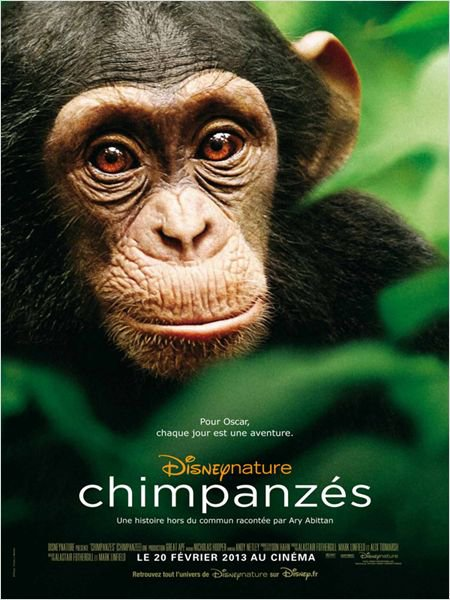 Chimpanzes 3.5/5
