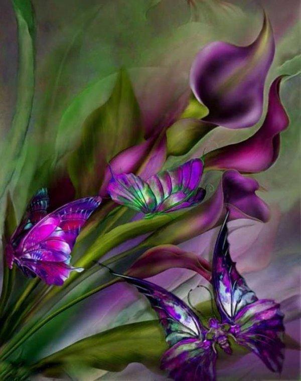 une            fleur un papilion !!!!!!!!!!pour vous souhaiter!!!!!!!!!!!une bonne nuit!!!!!!!!!!!!!!!!a vous tous!!!!!!!!!!!!!!!!