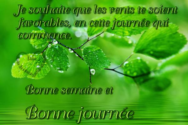 amour amitieeet tolerance!!!!!!!!!!!!!!!!!!!!