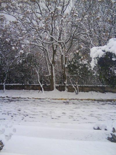 sétif avec la neige c est génial