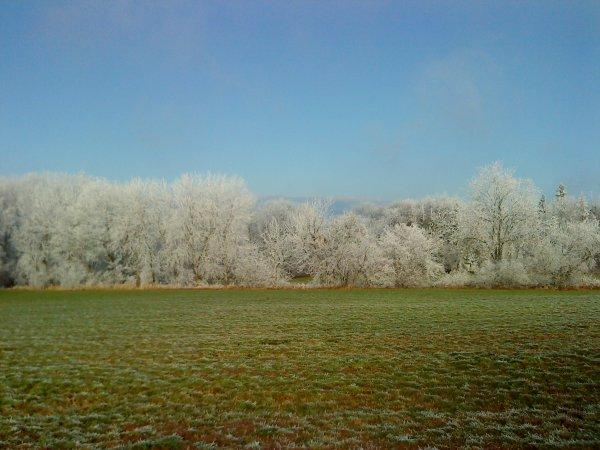 - L'hiver dévoile ses couleurs -