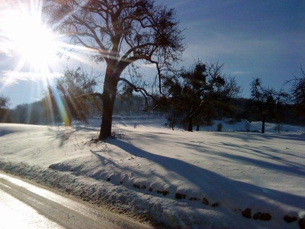 - Soleil et neige -
