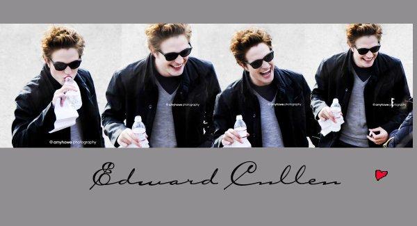 Le beau et romantique Edward Cullen                         Affronte                          Le beau et romantique Stefan Salvatore