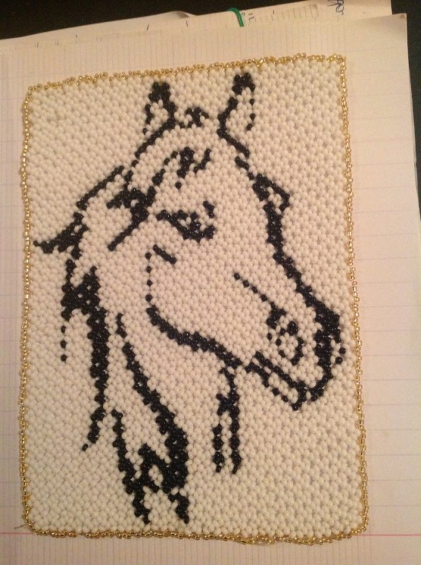 Un cheval extrait de mon book que j'ai eu à Noël par mon frère et créer par Sandrine Robitaille