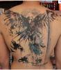 malédiction immortelle 5 tatoo jae