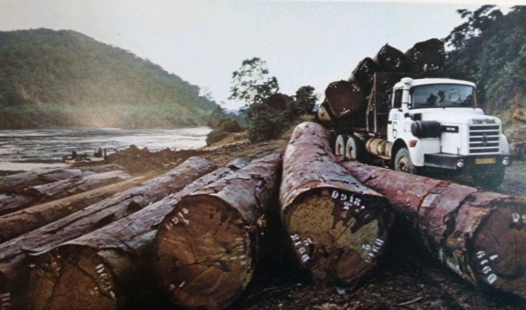 Calendrier 1980