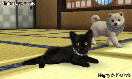 Nintendogs + cat