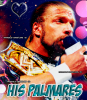 » Invincible-Wrestlers ~ Your Best Source About Triple H On Skyrock → Article # 3 : Palmarès