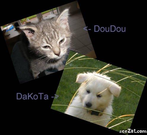 Blog de doudou-dakota