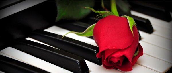 Par la musique, les passions jouissent d'elles-mêmes.