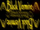 Photo de BLACK-VERMINE