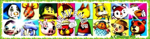_o1________ ~ ________________Bienvenue sur A-Cr0ssingxWii, un blog sur Animal Crossing.