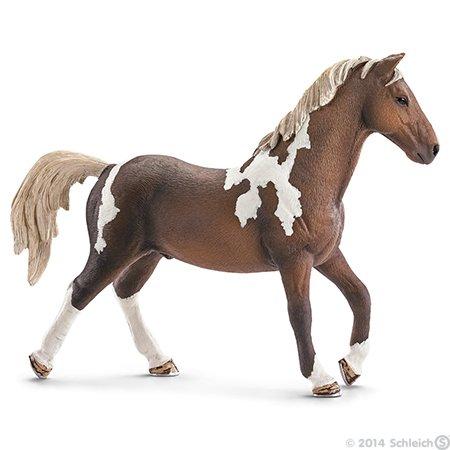 Nouveau cheval ;)