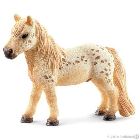 Petit poneyyyy <3