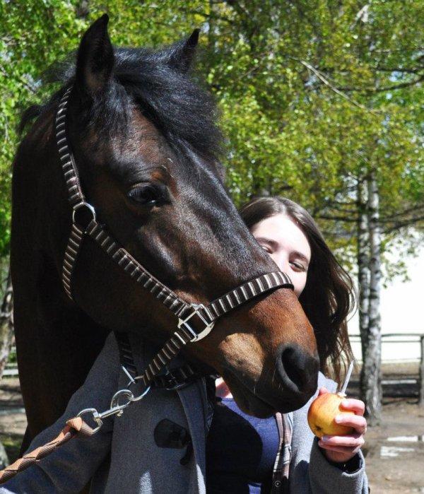 Joyeux anniversaire poney ! ♥