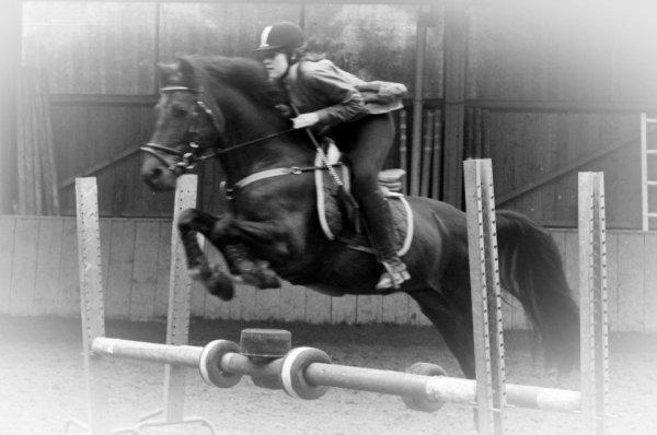 Un poney extra. Une cavalière merdique ... Je me rattraperai, promis poney ♥