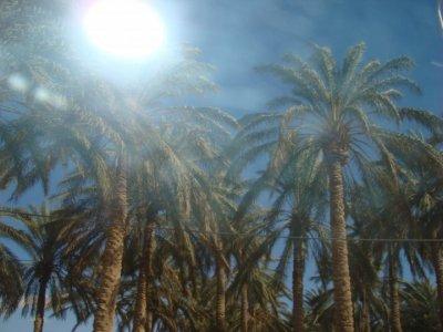 Mes vacances au Maroc (3)
