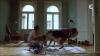 Lieux de tournage Kommissar Rex - Appartement de Moser (1) / Filming locations - Moser's apartment (1)