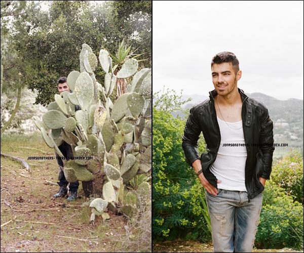 Photos 2011 Je vous présente deux photos de Joe Jonas, photographiée par  Paper Magazine