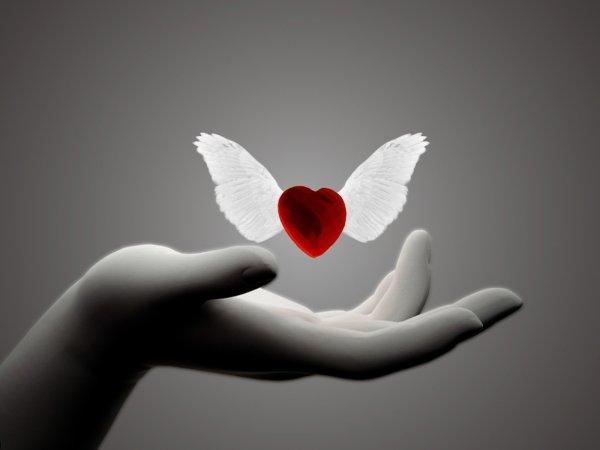 Coeur à prendre