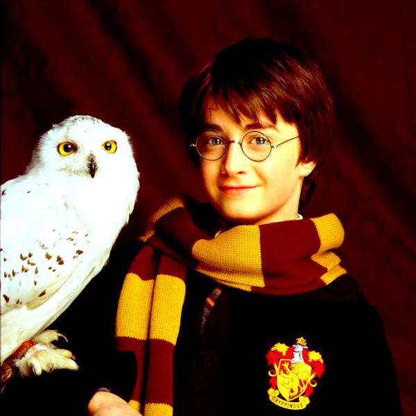 Blog Potter782