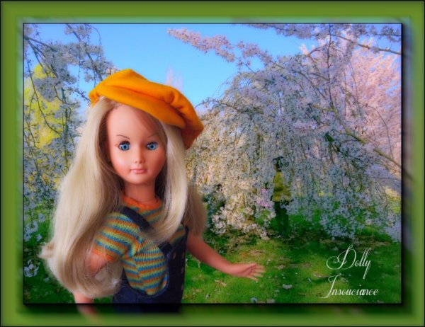 Nouvelle Dolly