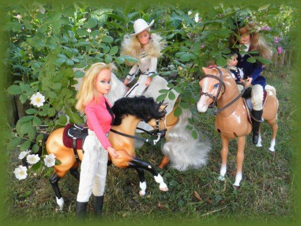 Barbie cavalière