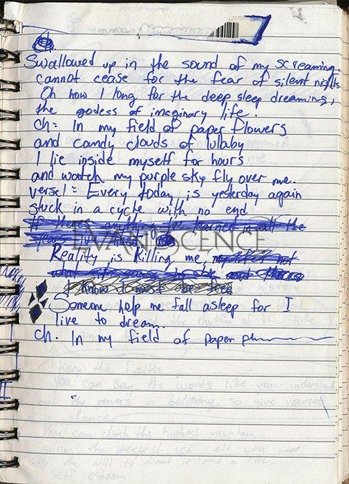 Photos d'un cahier d'Amy, révélée pour les 10ans de FALLEN