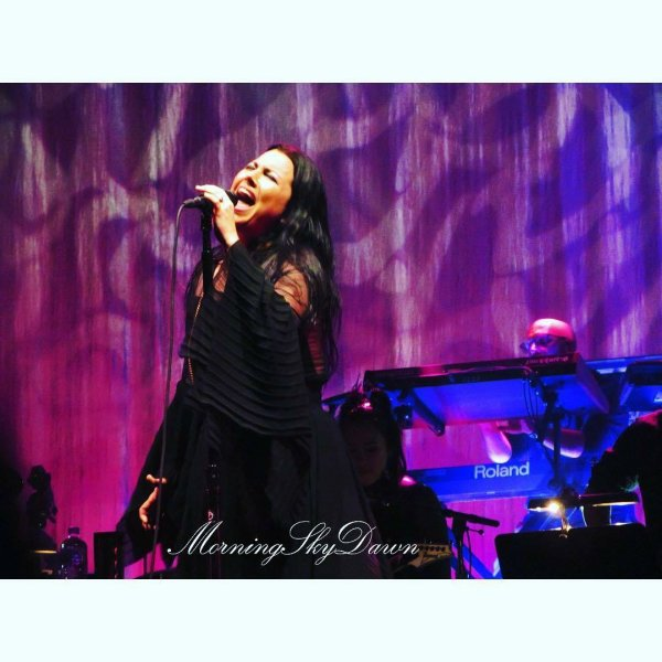 Review : Evanescence/Synthesis Live - Brisbane/Australie 10/02/18 Partie II