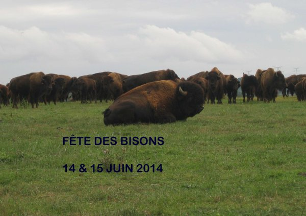 FÊTE DES BISONS 14 & 15 JUIN 2014