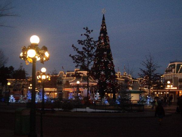 Le merveilleux sapin de Noël !