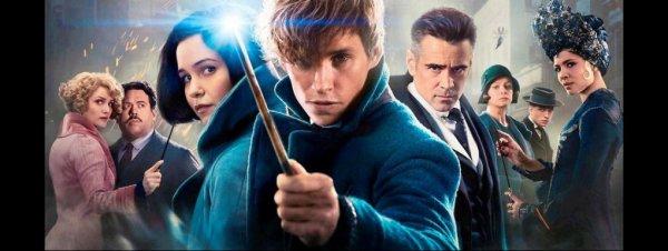 """""""Les Animaux fantastiques 2"""" : le danger rôde dans le synopsis de la suite"""