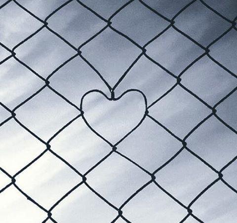 Mon coeur .................