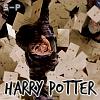 Photo de Simply-Potter