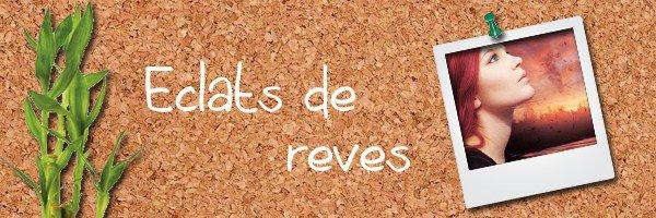 13: http://eclats-de-reves.skyrock.com/