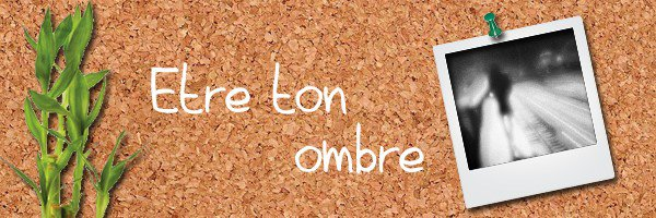 16: http://etre-ton-ombre.skyrock.com/