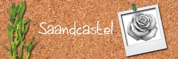 17: http://saandcastle.skyrock.com/
